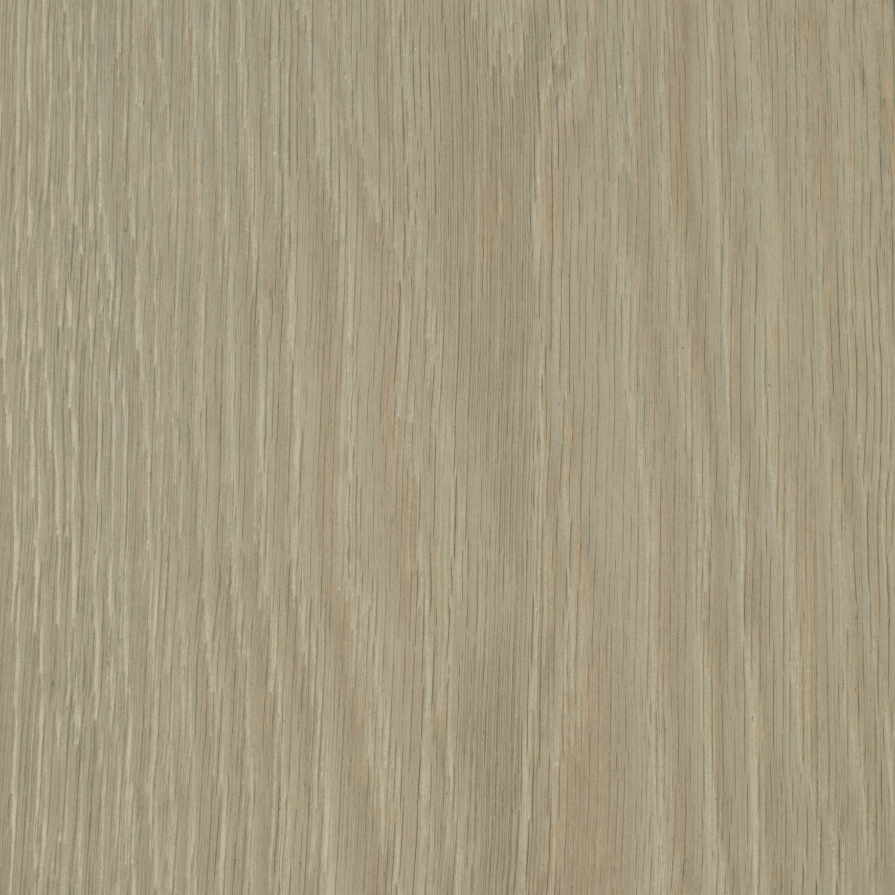 Element7-wide-plank-samples-RT-Ash-Grey-3